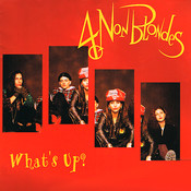 Partition What's up ? 4 Non Blondes